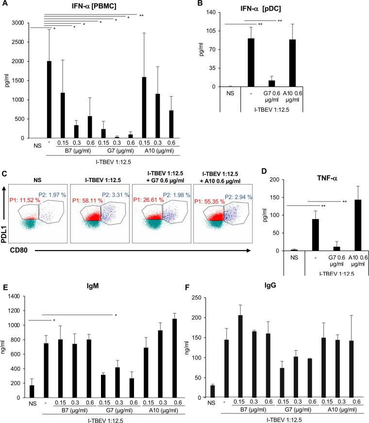 Impact of TBEV E glycoprotein neutralization on IFN-α and Ig production. Total PBMC or isolated pDC were left untreated (NS) or stimulated with I-TBEV (dilution 1:12.5) alone or in combination either with two single-chain Ab (scAb) blocking TBEV E glycoprotein, B7 and G7 or with a scAb non-related to TBEV, A10 clone. (A) The release of IFN-α was measured by ELISA in culture supernatants of total PBMC left untreated (NS) or stimulated for 24 hours with I-TBEV alone or in combination either with B7 and G7 or with a non-related scAb A10 clone at the concentration of 0.15 μg/ml, 0.3 μg/ml and 0.6 μg/ml. The results shown were mean values ± standard error of the mean (SEM) of 3 independent experiments. ANOVA p value for IFN-α: 0.006. Based on LSD (equivalent to no adjustments). (B-D) Isolated pDC were left untreated (NS) or stimulated with I-TBEV alone or in combination either with G7 clone (0.6 μg/ml) or with A10 clone (0.6 μg/ml) for 24 hours. The production of IFN-α (B) was measured by ELISA in culture supernatants. The results shown were mean values ± SEM of 3 independent experiments. ANOVA p value for IFN-α: 0.000. Based on LSD (equivalent to no adjustments). (C) pDC were stained with PD-L1, HLA-DR, CD86, CD80, ILT7, BDCA2 and BDCA4. A total of 50.000 cells were analyzed per sample by flow cytometry to evaluate the percentage of pDC sub-populations. A representative pDC sub-population profile out of 3 different experiments conducted separately is shown: P1-pDC (PD-L1 + CD80 - ) population is indicated in red while P2-pDC (PD-L1 + CD80 + ) in blue. TNF-α production (D) was tested by cytometric bead assay in 24 hour-collected supernatants. The results shown were mean values ± SEM of 3 independent experiments. ANOVA p value for TNF-α: 0.002. Based on LSD (equivalent to no adjustments). (E-F) IgM and IgG production was measured by ELISA in supernatants collected from PBMC after 10 days of stimulation. The results are mean values ± SEM of 3 independent experiments for Ig