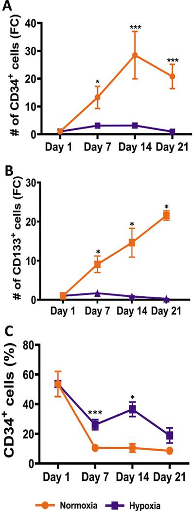Hypoxia reduces proliferation of <t>CD34</t> + hematopoietic stem and progenitor cells. CD34 + and CD133 + cells in cultures in both hypoxia and normoxia were determined by flow cytometry on days 1, 7, 14 and 21. (A) Fold change in the number of CD34 + cells in the normoxic and hypoxic cultures was calculated relative to day 1. (B) Fold change in the number of CD133 + cells in the normoxic and hypoxic cultures was calculated relative to day 1. (C) Percentage of CD34 + cells in the Lin − /Live population is shown. Data are represented as the mean with standard error ( n = 6 for CD34 and n = 4 for CD133). Statistical analysis was performed using the Mann-Whitney test, and p values ≤ 0.05 were considered significant. * p