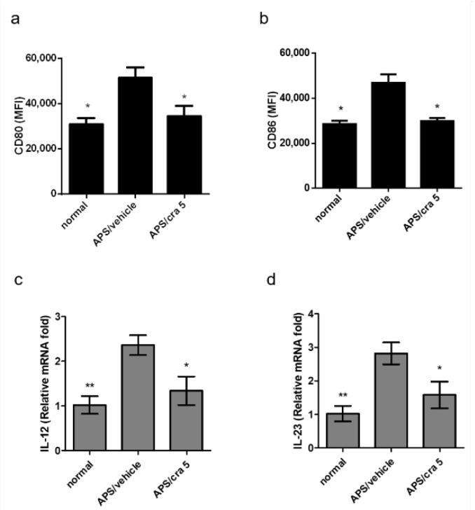 Effects of carssolide on the expression of surface markers of splenic DCs in APS mice. Spleen cells were purified from different mouse groups on day 56, and the relative mean fluorescence intensity (MFI) of ( a ) CD80 and ( b ) CD86 were measured by flow cytometry. Data are presented as mean ± SEM of 5 mice from one of three independent experiments. ( c ) IL-12 and ( d ) IL-23 mRNA expression levels in purified splenic CD11c+DCs determined by reverse transcription-quantitative PCR. Data were normalized to hypoxanthine guanine phosphoribosyl transferase 1 expression levels. * p