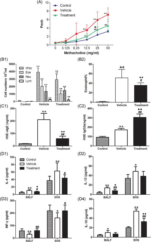 Effects of SCIT on HSE‐induced AHR, airway inflammation and immunological response. Mice were sensitized and challenged as described in Figure 1 B. AHR to Mch(A): Penh dose–response curves to Mch were determined 24 h after the last challenge (on day 50). The mice were killed 1 day later for analysis of inflammatory cell recruitment (B1) and percentages of eosinophils (B2) in BALF, HSE‐specific IgE (C1) and IgG2a (C2) in serum and cytokine production of IL‐4 (D1), IL‐13 (D2), IFN‐γ (D3), and IL‐10 (D4) in BALF and SHS. Data are expressed as mean ± SEM of n = 10 mice per group. ** p