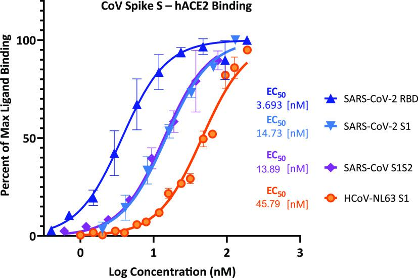 Concentration–response curves for binding of CoV spike protein domains to human ACE2 in cell-free ELISA-type assays. Binding curves and corresponding EC 50 's are shown for SARS-CoV-2 (RBD and S1), SARS-CoV (S1 S2), and HCoV-NL63 (S1). They were obtained using Fc-conjugated hACE2 coated on the plate and His-tagged S1, S1S2, or RBD added in increasing amounts as shown with the amount bound detected using an anti-His–HRP conjugate (mean ± SD for two experiments in duplicates).
