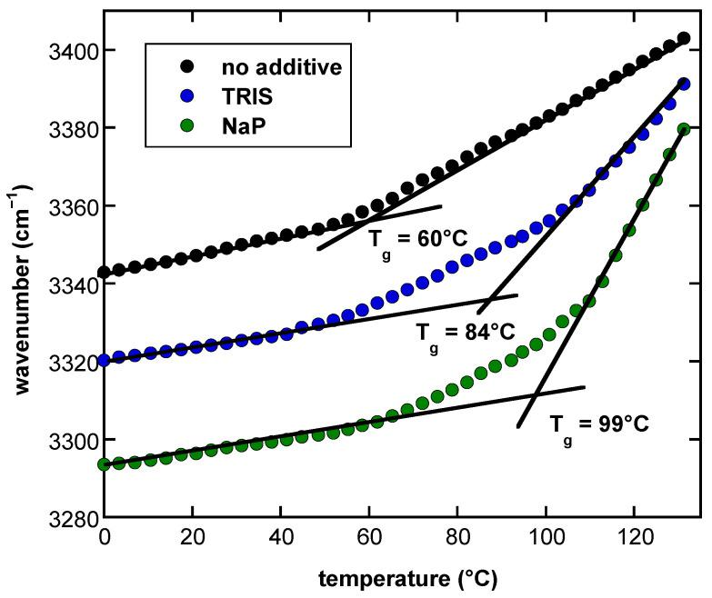 Melting curves of dry Suc glasses determined from the temperature-induced shift of the position of the νOH peak in FTIR spectra. Suc at a final concentration of 10 mg/mL was dissolved in pure H 2 O, in Tris or NaP buffer (10 mM, pH 7.4) and dried on CaF 2 windows. Glass transition temperatures (T g ) were determined from the intersection of fitted regression lines in the glassy state at low and the melted state at higher temperatures. T g of the different samples is indicated.