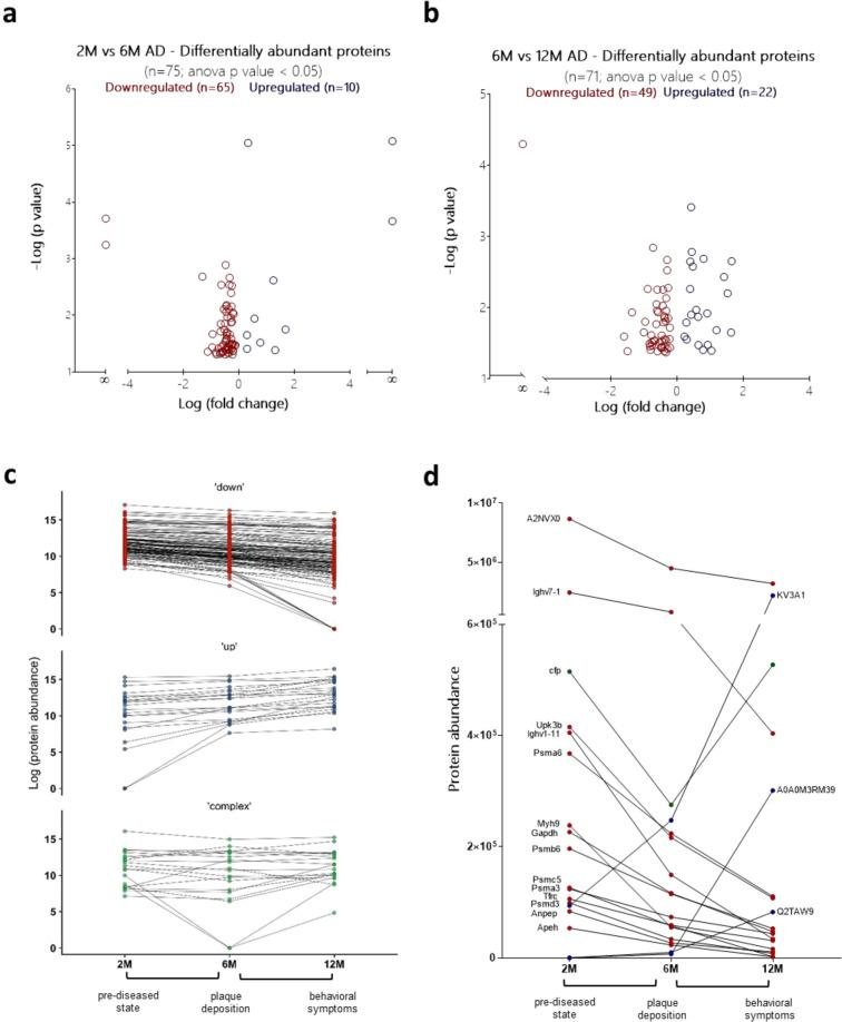Systemic monitoring of AD progression. Time evolution of the liposomal coronas in APP/PS1 mice. Proteomic comparisons between (a) 2M vs 6M and (b) 6M vs 12M time points ( n = 3 biological replicates; n = 3 mice/replicate). <t>MS</t> <t>peak</t> intensities were analyzed using Progenesis LC-MS software (v. 3.0; Nonlinear Dynamics). Only proteins that differed by a p value