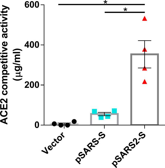 Competitive activity of immunized mouse sera against the RBD/ACE2 interaction. BALB/c mice (n = 4 per group) were intramuscularly immunized twice at a 3-week interval with 100 μg of vector, pSARS-S or pSARS2-S, followed by electroporation. Serum samples were collected at week 8 after the first immunization. Serum antibodies that compete with ACE2 for RBD binding were evaluated by competitive SARS-CoV-2 serology assay. The competitive activity of the mouse sera is expressed as the equivalent level of anti-RBD (SARS-CoV-2 spike protein) antibody (reference antibody). Antibody titers are presented as the mean ± SEM. *p