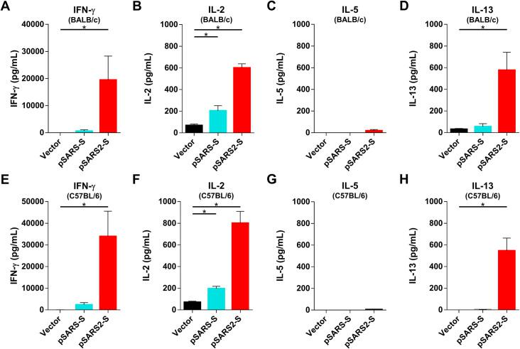 T cell response in mice after immunization with pSARS-S and SARS2-S DNA vaccines. BALB/c (A-D) and C57BL/6 (E-H) mice (n = 4 per group) were intramuscularly immunized twice at a 3-week interval with 100 μg of vector, pSARS-S or pSARS2-S, followed by electroporation. Splenocytes were collected at week 4 after the first immunization, and the levels of secreted IFN-γ (A, E), IL-2 (B, F), IL-5 (C, G) and IL-13 (D, H) were evaluated after restimulation with recombinant SARS-CoV-2 S protein. Antibody titers are presented as the mean ± SEM. *p