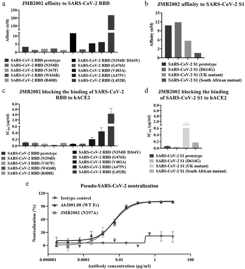 Characterization of JMB2002. Binding affinity of JMB2002 for the SARS-CoV-2 RBD (a)/S1 (b) prototype and its variants was determined by BLI. JMB2002 was loaded onto the AHC sensor, and serially diluted antigens were bound to JMB2002 on the biosensor. K D values were determined with Octet Data Analysis HT 11.0 software using a 1:1 global fit model. Blocking activity was assessed using ELISA with hACE2-coated plates. A mixture of biotinylated SARS-CoV-2 RBD (c)/S1 (d) proteins and JMB2002 was added for competitive binding to hACE2. IC 50 values were calculated by Prism V8.0 software using a four-parameter logistic curve fitting approach. Values are displayed as the mean ± standard deviations from three independent experiments. (e) The pseudovirus neutralization activity of JMB2002 was evaluated using a pseudotyped SARS-CoV-2 system, which contained a luciferase reporter. Pseudotyped viruses were preincubated with serially diluted antibodies for 1 h. The mixture was added to hACE2-expressing cells and incubated at 37°C for 20–28 h. Infection of cells with pseudotyped SARS-CoV-2 was assessed by measuring cell-associated luciferase activity. IC 50 values were calculated by plotting the inhibition rate against the log antibody concentration in Prism V8.0 software