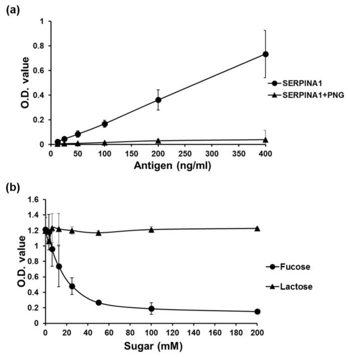 Evaluation of the specificity of AAL binding to fuco-SERPINA1 in reverse lectin ELISA. ( a ) Different amounts of recombinant SERPINA1 protein were treated with or without PNGase F (PNG) (protein:PNGase F = 1 µg:1U, 37 °C for 20 h) and subjected to AAL-based reverse lectin ELISA. ( b ) AAL was pre-incubated with different doses of L-fucose or lactose at room temperature for 0.5 h and coated onto ELISA plates. Plates were subjected to reverse lectin ELISA for detecting fixed amounts of fuco-SERPINA1. OD values were measured at 450 nm and each data point was examined in duplicate. Data expressed as mean ± S.D. are presented as a black solid line.