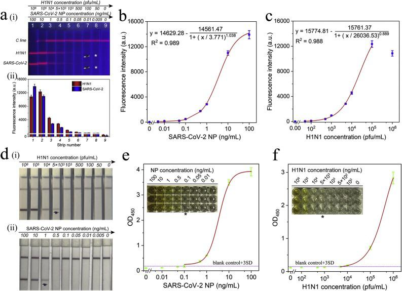 (a) Fluorescence pictures (i) and corresponding test line intensities (ii) of SiTQD-based ICA strip for SARS-CoV-2 NP antigen and H1N1 detection. Corresponding calibration curves for (b) SARS-CoV-2 NP antigen and (c) H1N1. The error bars represented standard deviations calculated from three experiments. (d) Photographs of colloidal gold-based ICA strips for different concentrations of (i) H1N1 and (ii) SARS-CoV-2 NP antigen detection. (e-f) ELISA analysis for SARS-CoV-2 NP antigen (e) and H1N1 detection (f). The insets are colorimetric results of ELISA plates for different concentrations of target virus antigens.