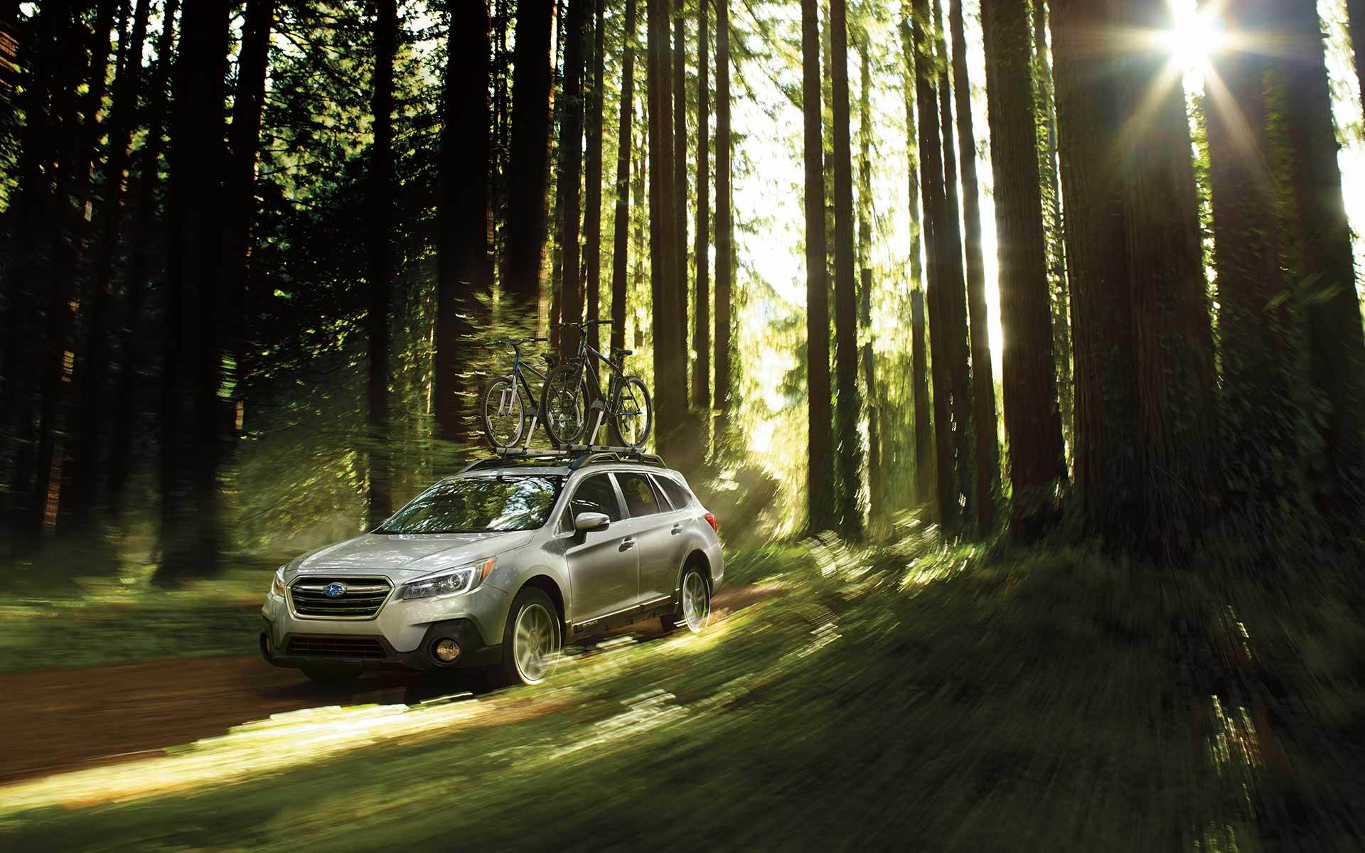2019 subaru outback trees forest offroad
