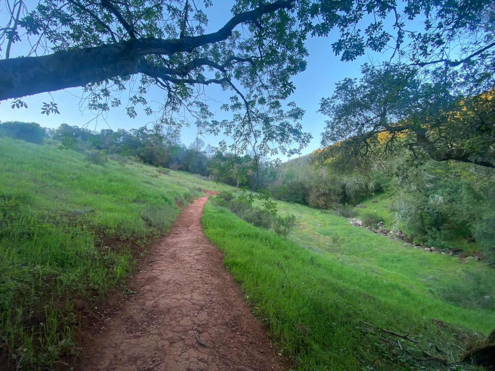 Overlook Trail, Sonoma. California