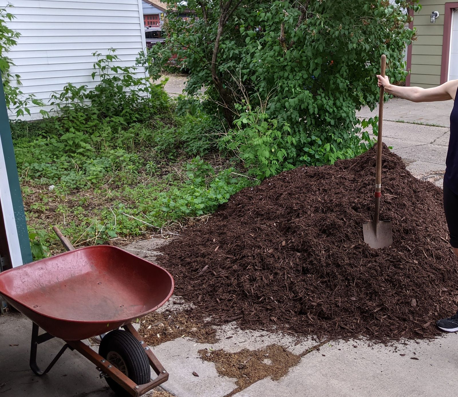Mama and a pile of mulch.