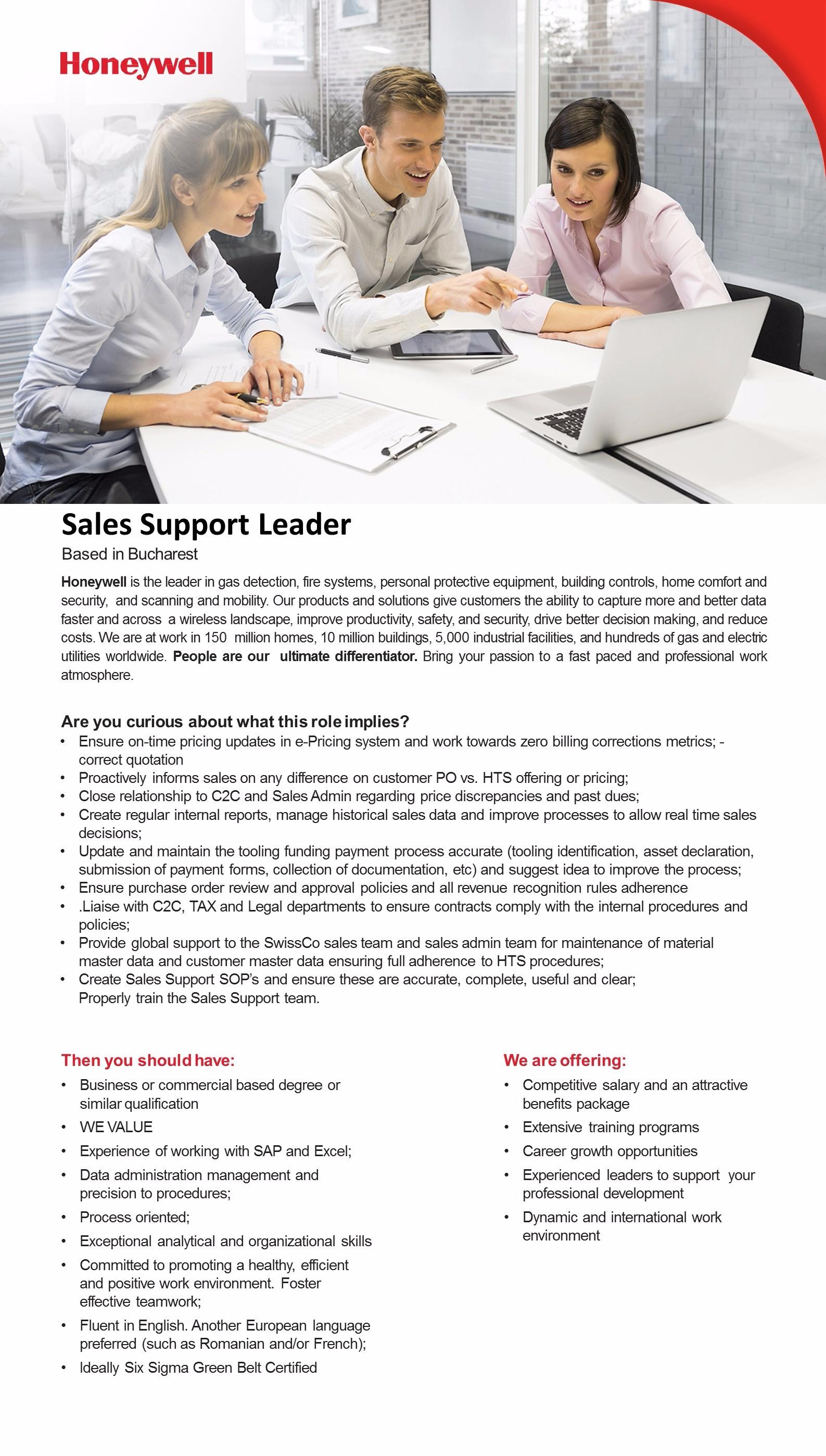 Sales Support Leader