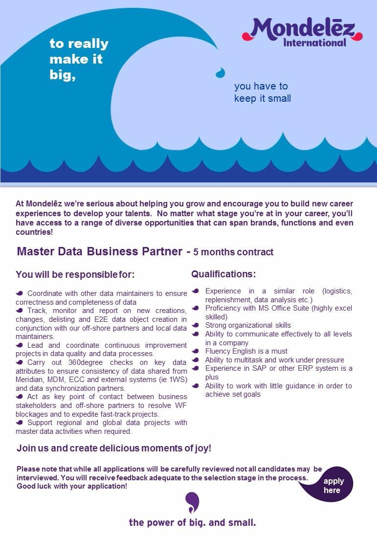 Master Data Business Partner Job Ad