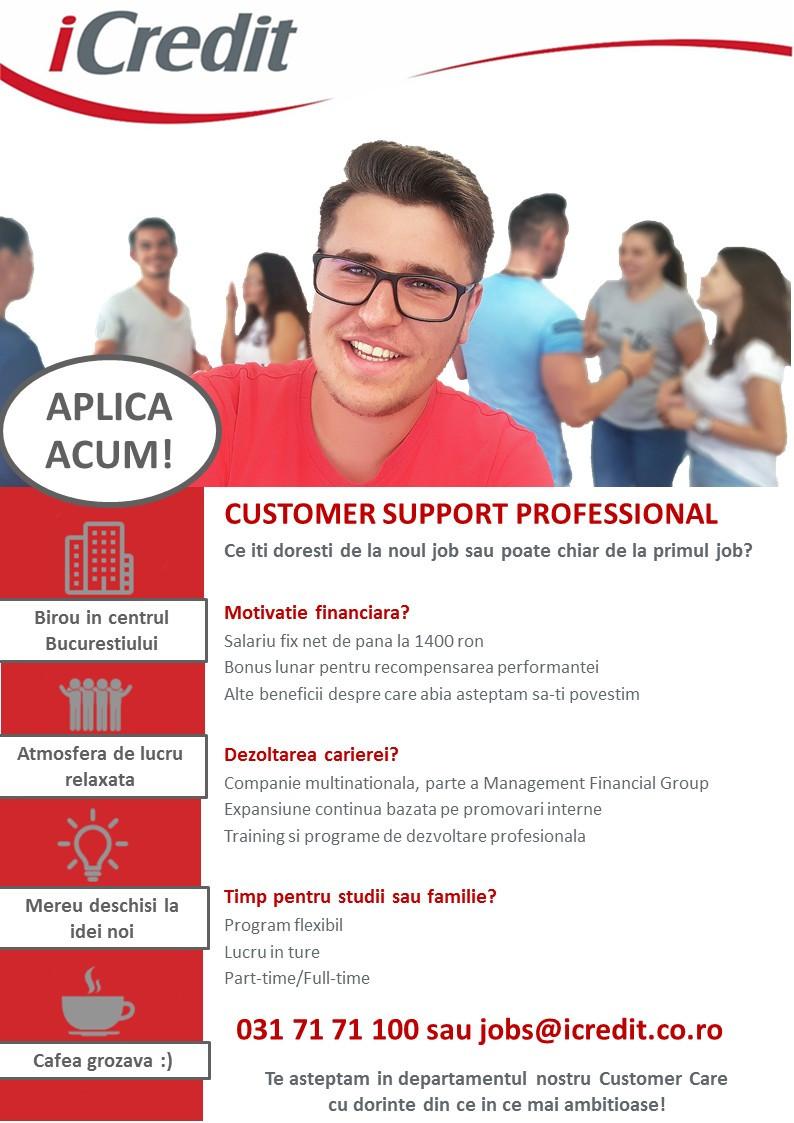 JD Customer Support Professional