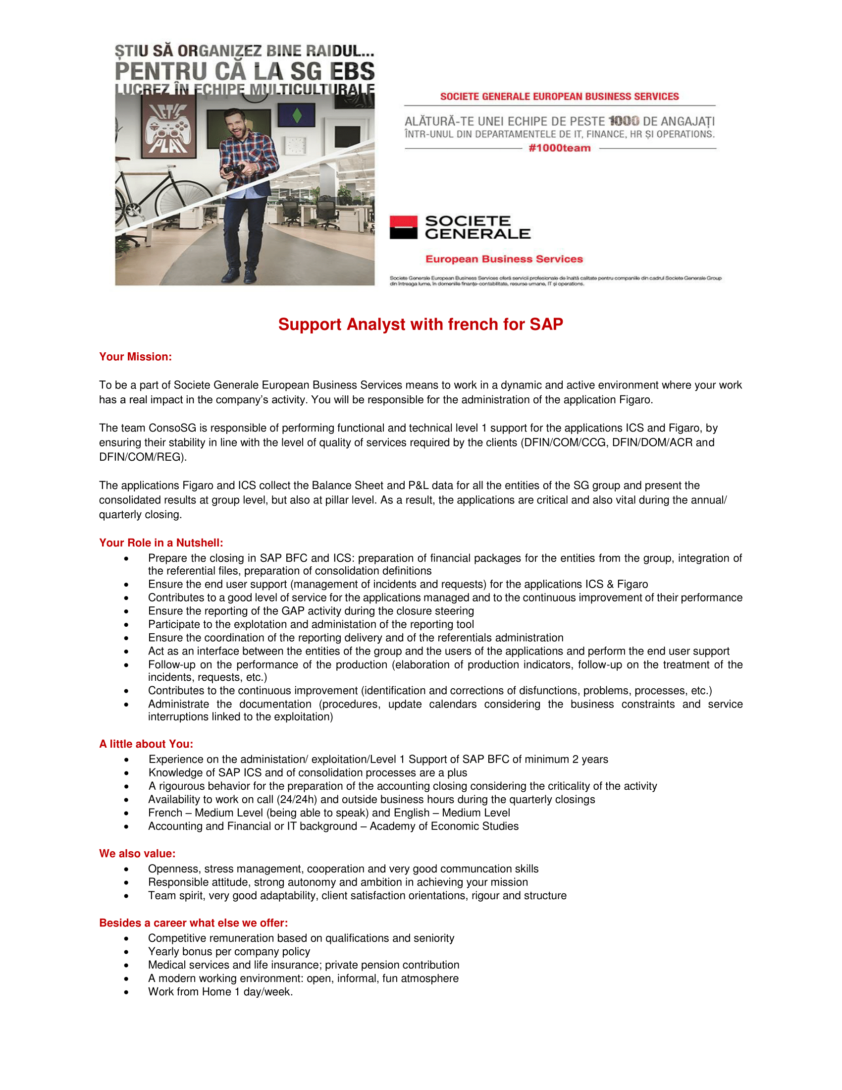 Support Analyst with French for SAP-1
