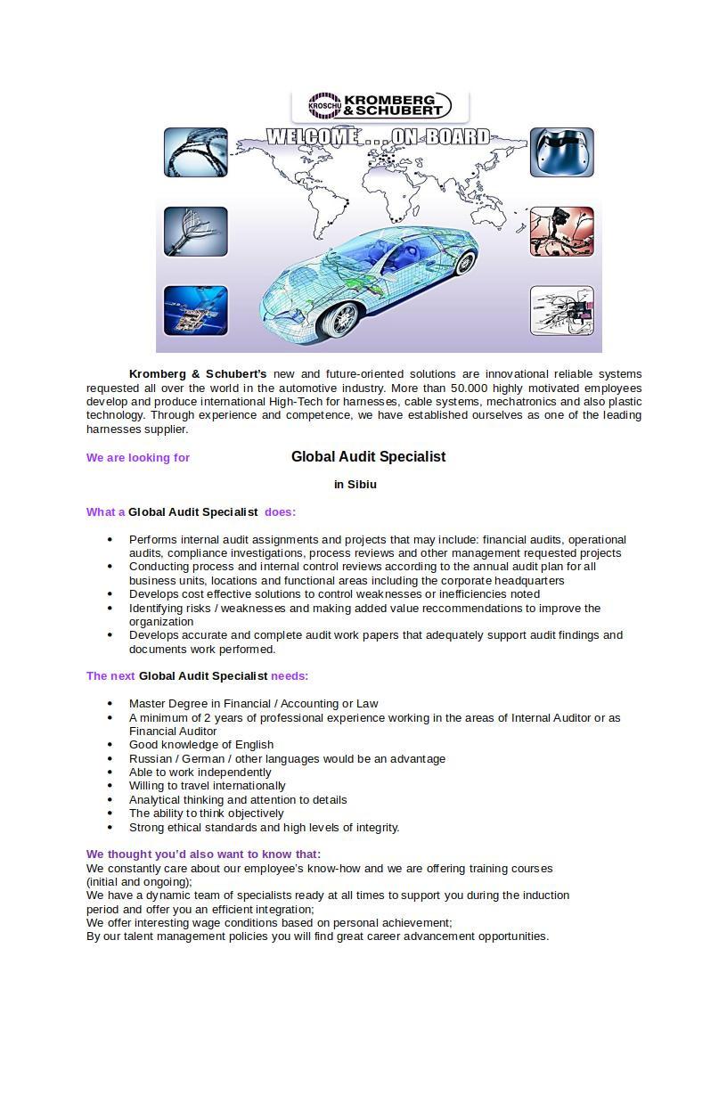 Global Audit Specialist-1