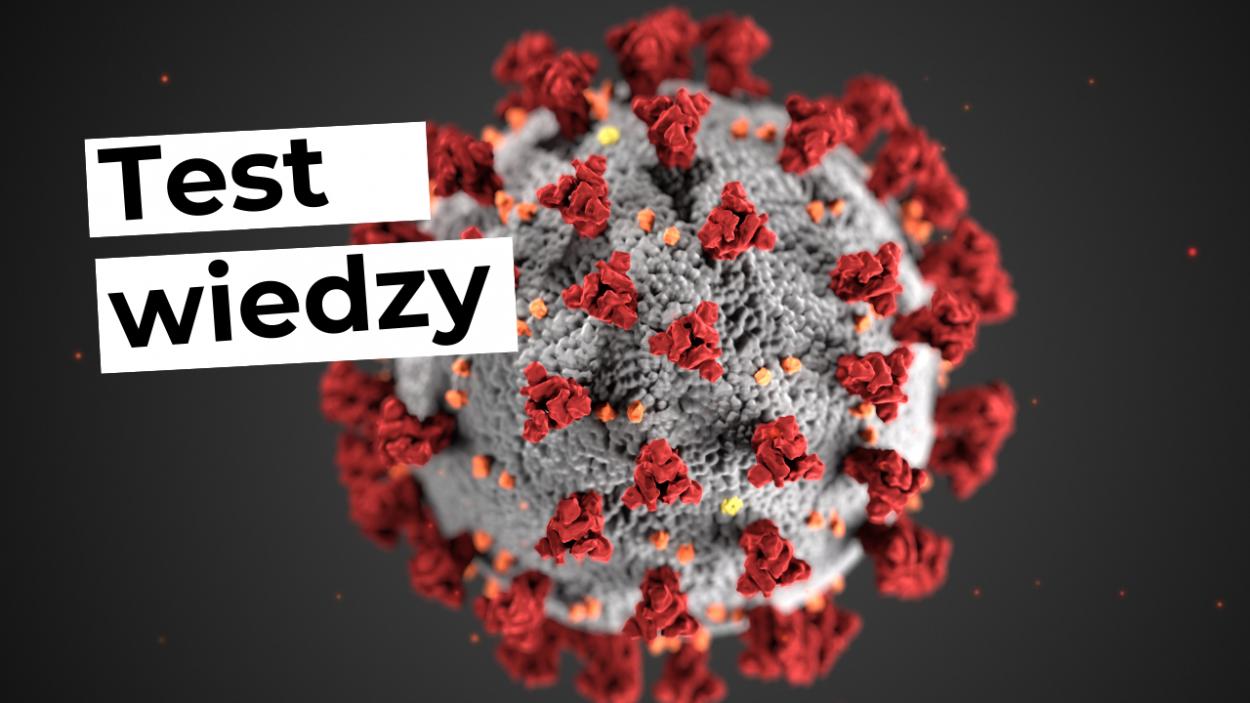 3. Wirusy bakterie protisty i grzyby