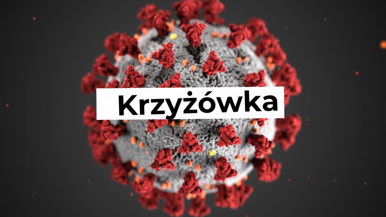 3. Wirusy bakterie protisty i grzyby - krzyżówka