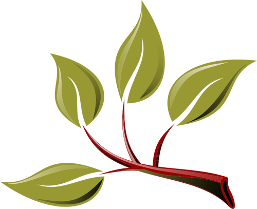 Branch-With-Leaves.png