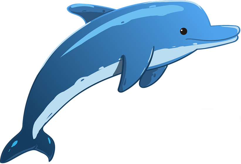 dolphin-3321762960720.png