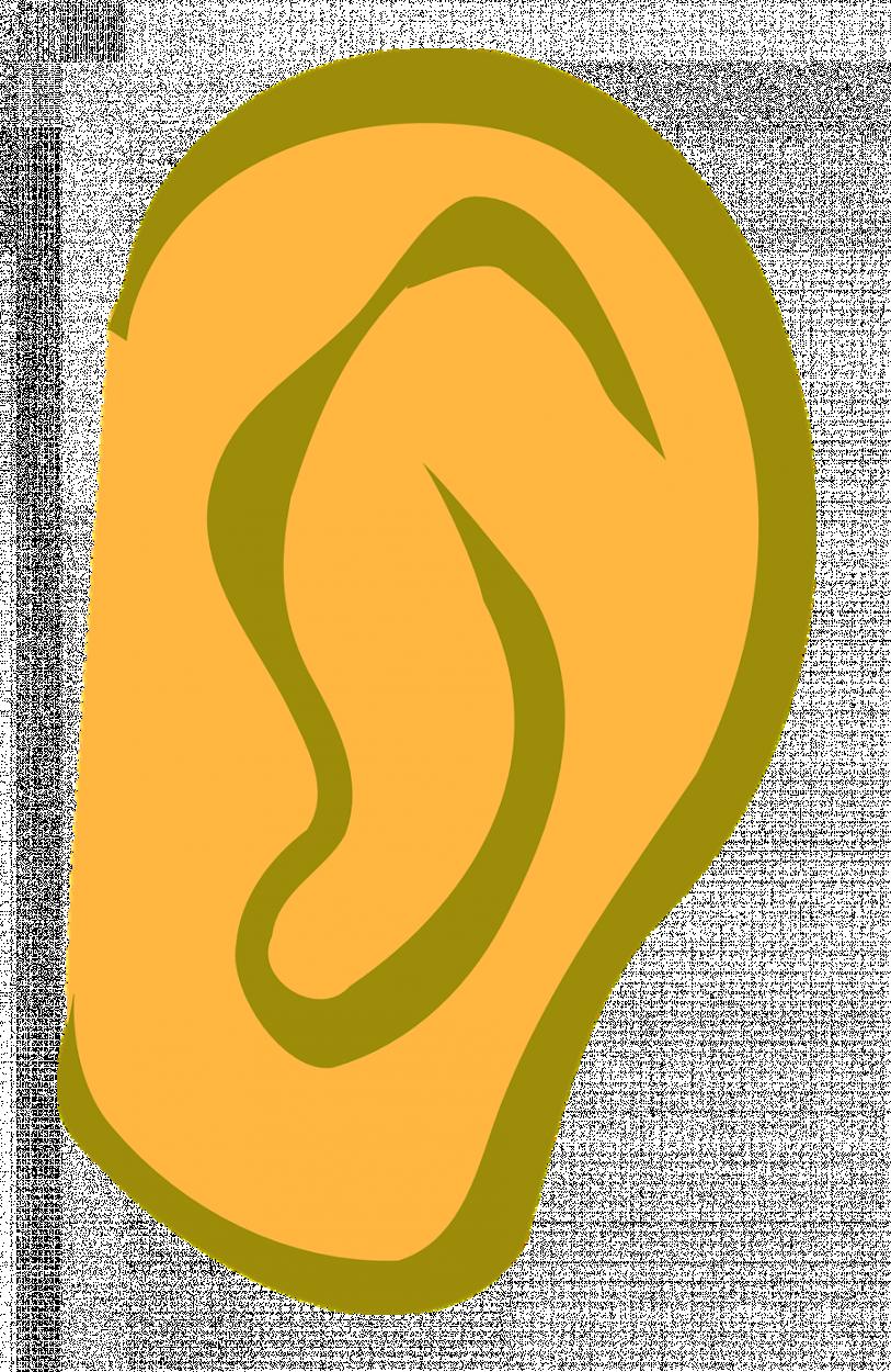 ear-3053031280.png