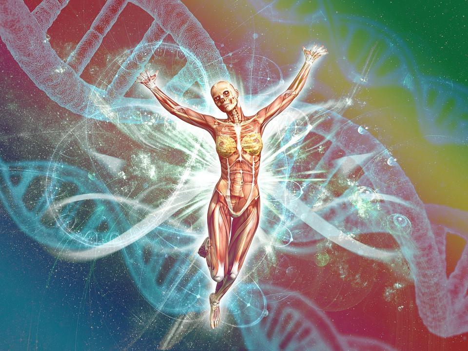 Biologia człowieka