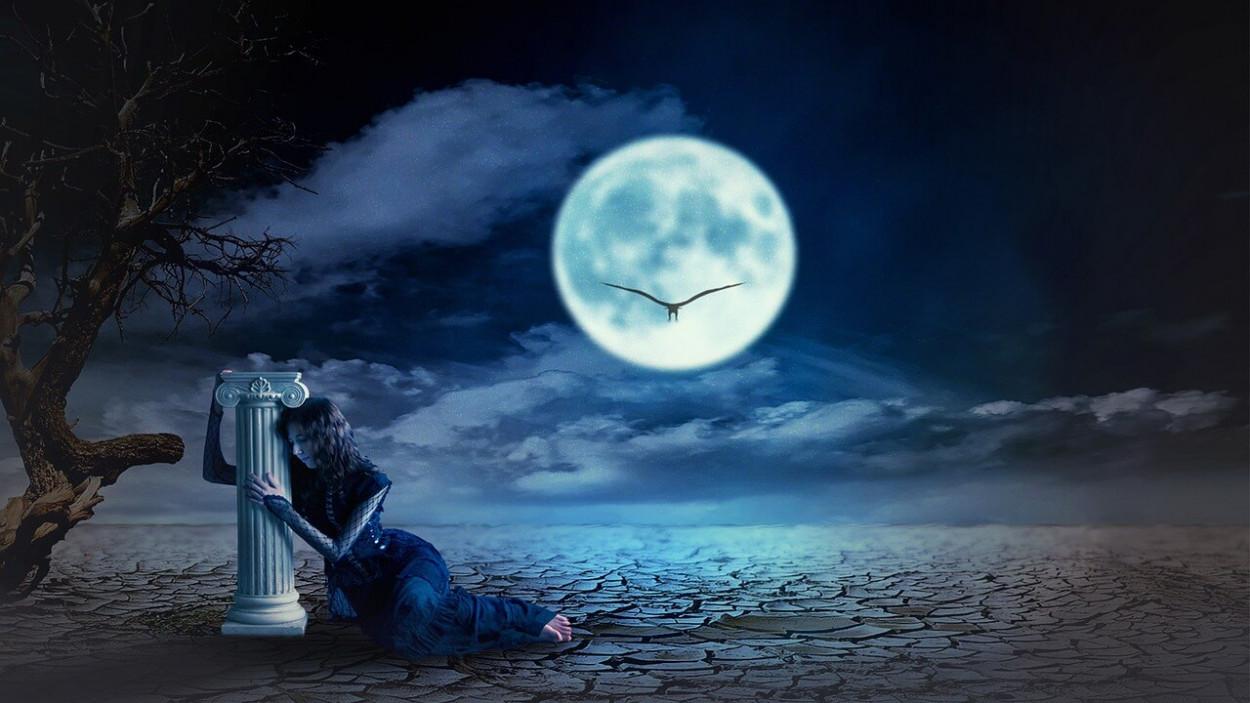 midnight-fantasy-30077631280.jpg