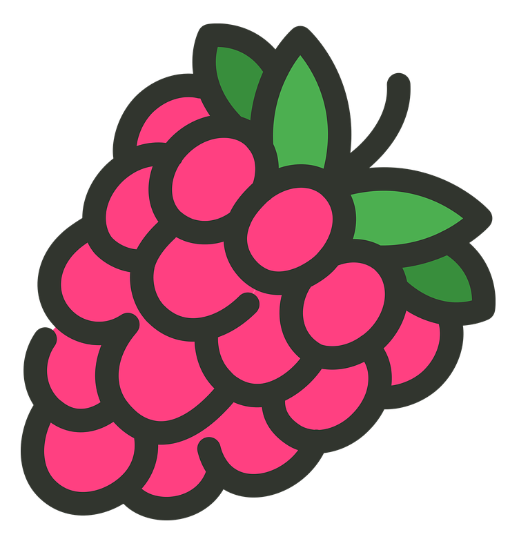 raspberry-2161523960720.png