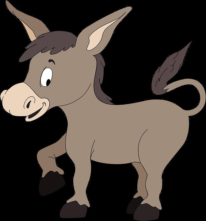 burro-1295711960720.png