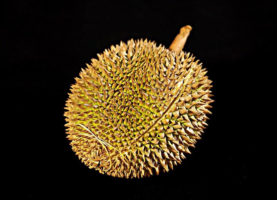 durian-fruit-2789048960720.jpg