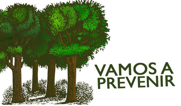 Vamos a Prevenir