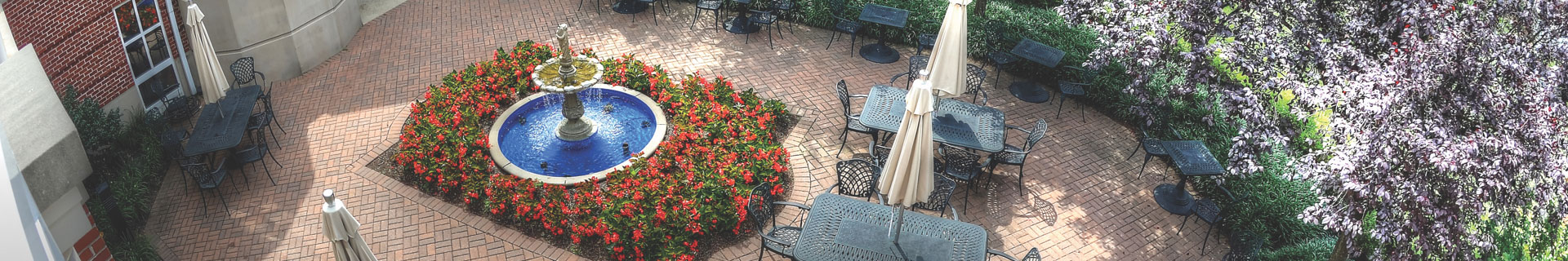community garden and outdoor seating
