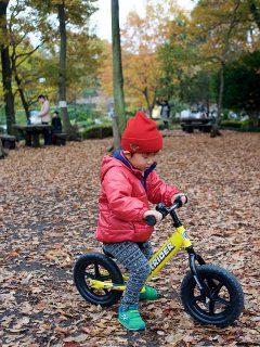 息子さんと落ち葉だらけの公園