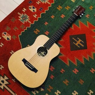 夜な夜なギター練習にLittleMartinを導入