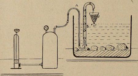 立ち上げ時点での水槽環境について紹介2 ~ 濾過器編 ~