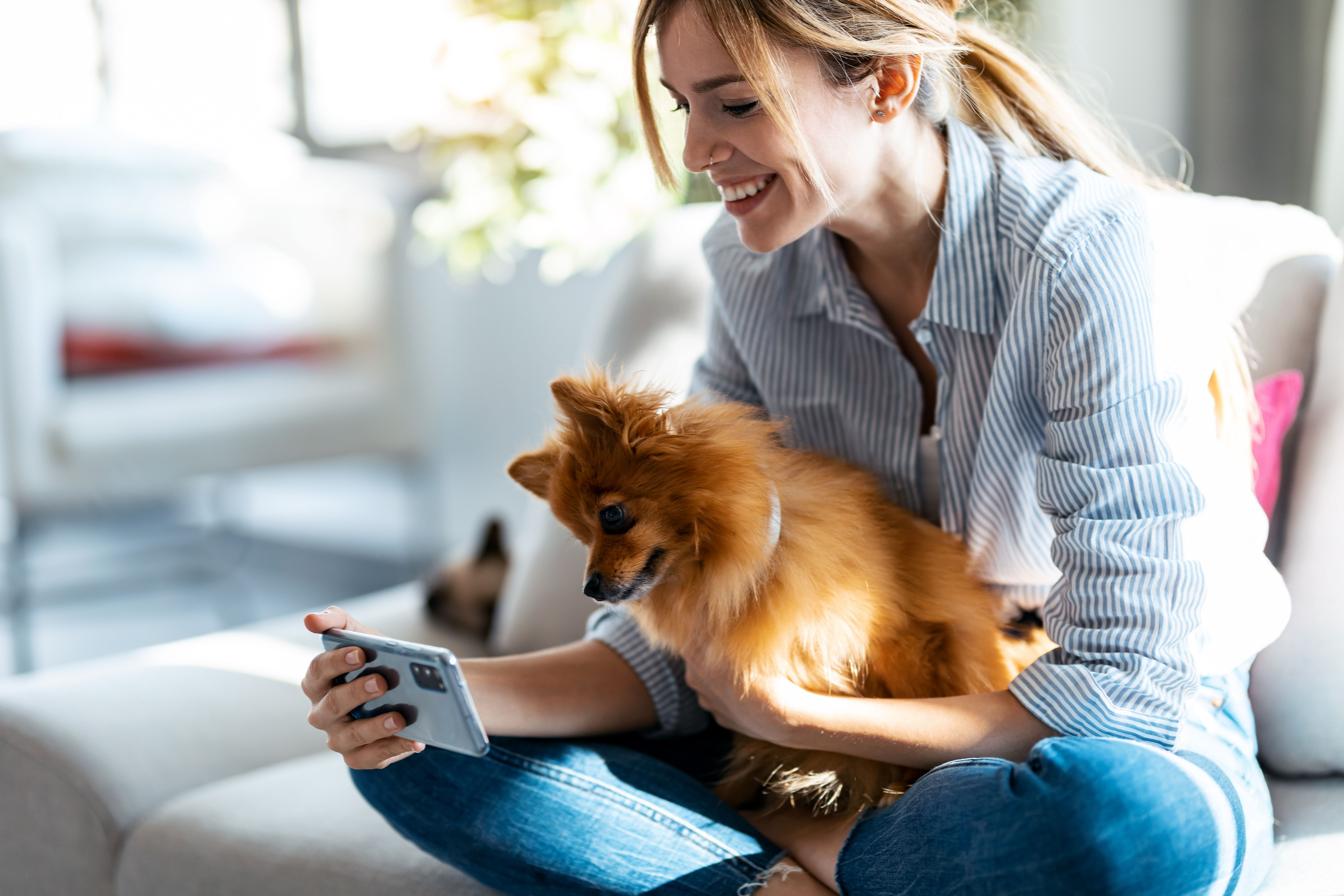pretty woman with her cute dog using mobile phone.jpg