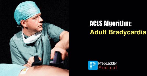 Acls Algorithm Adult Bradycardia
