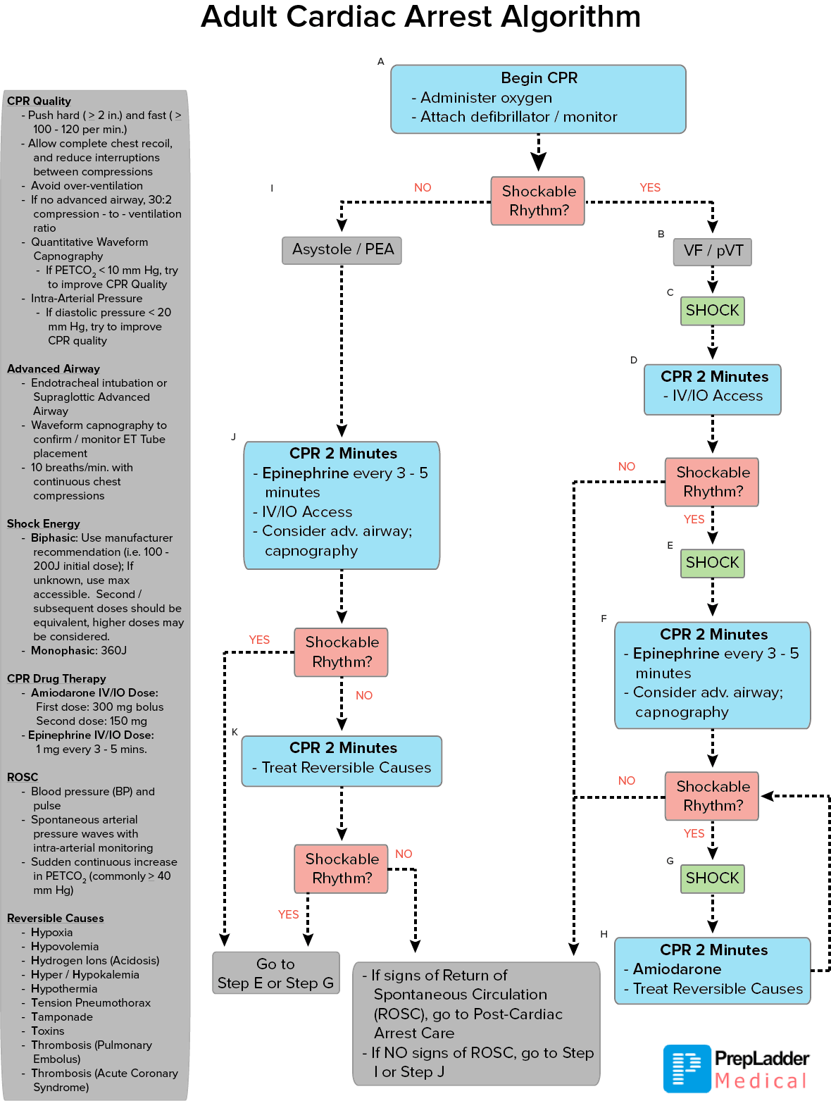 Acls algorithm adult cardiac arrest refer the flowchart mentioned below to have an even more detailed step by step description of the adult cardiac arrest algorithm nvjuhfo Gallery