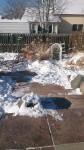 frozen back porch