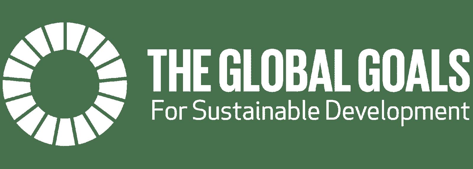 The SDG Goals