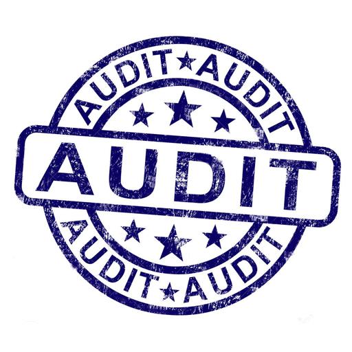 Auto Audit