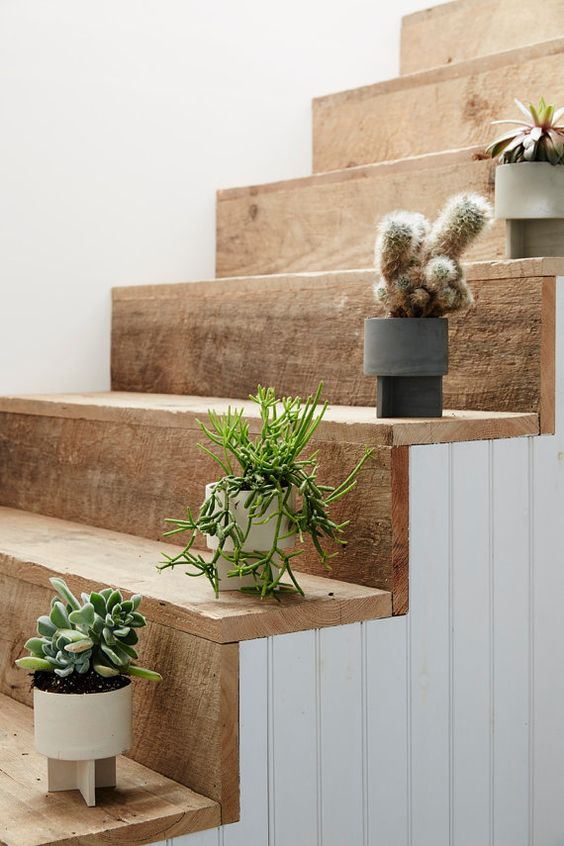 idee deco escalier plantes