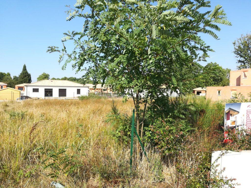Achat Du Terrain Construction Maison Après Signature Chez Notaire