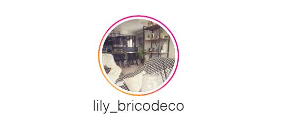 profil-lilydeco