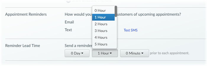 The Reminder Lead Time menu in Setmore.