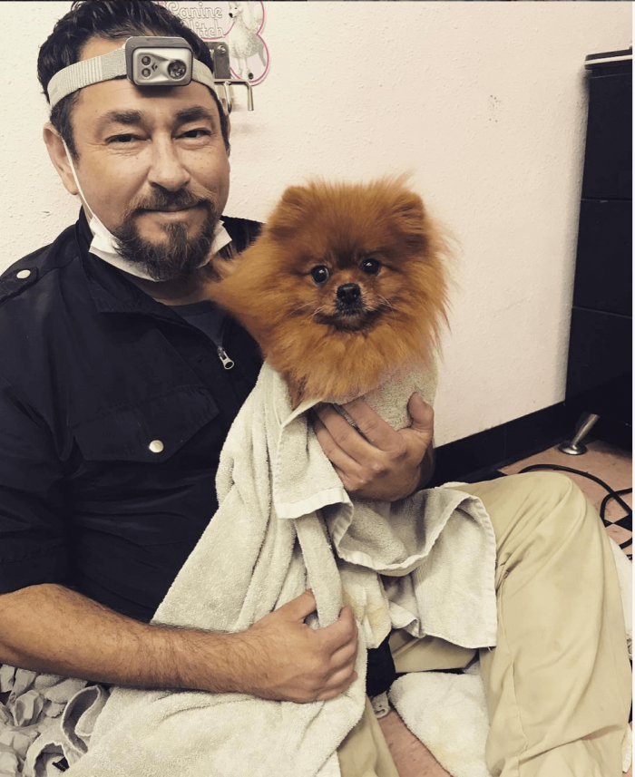pet dentist with a dog
