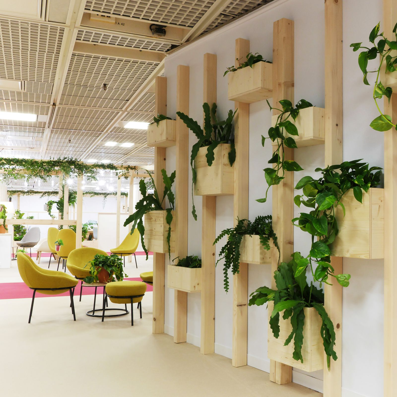 plantes au bureau