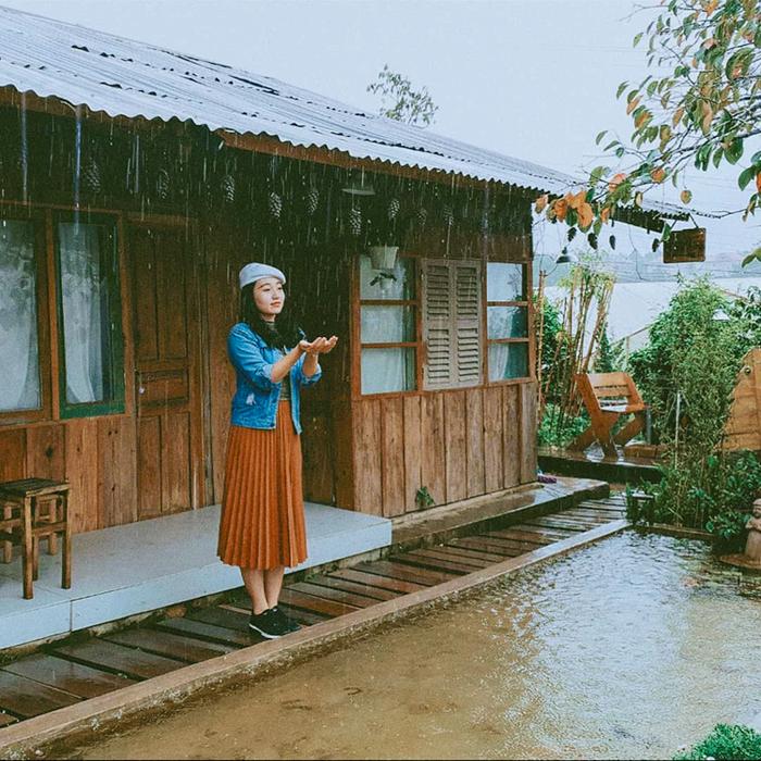 Du lịch Đà Lạt nên đi mùa nào là đẹp và lãng mạn nhất - Mùa Thu - Du lịch Đà Lạt mùa mưa