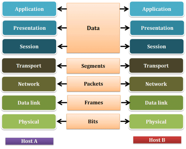osi model and networking notes for bank exams