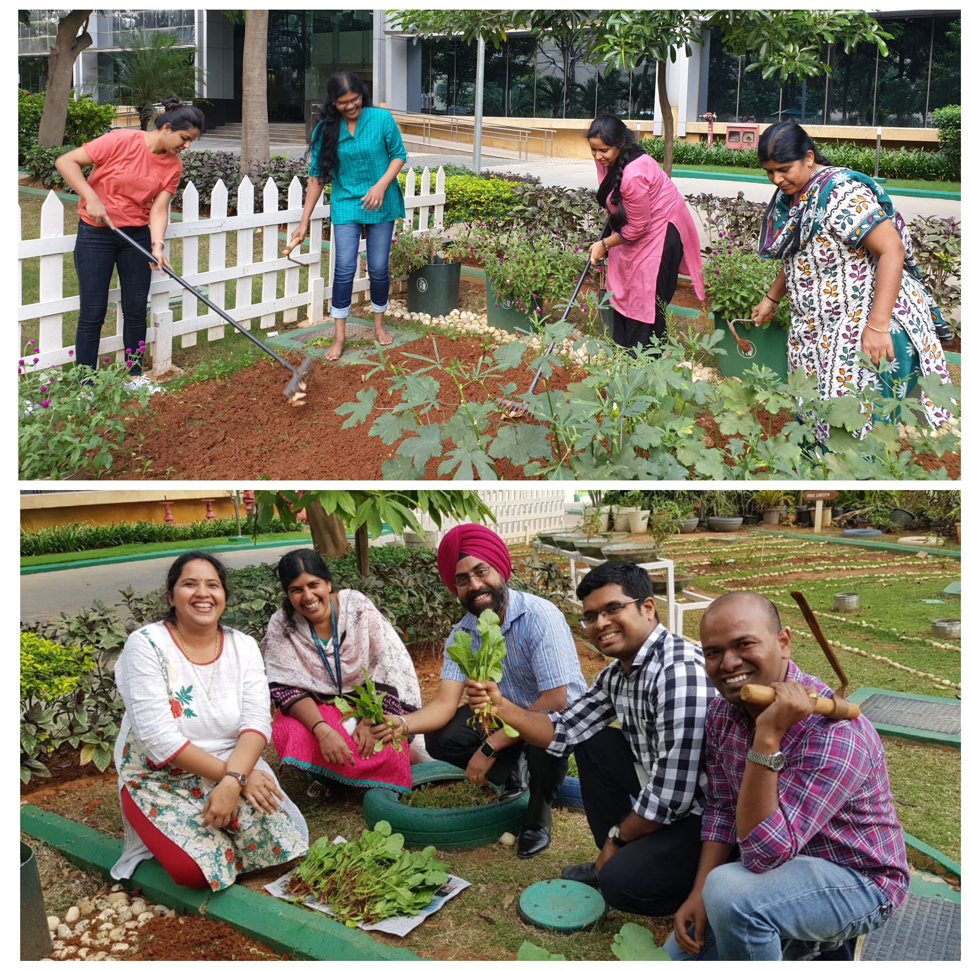 Raja and their peers working in the Cisco community garden in Bangalore.